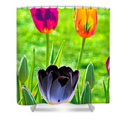 Tulips - Perfect Love - Photopower 2168 Shower Curtain