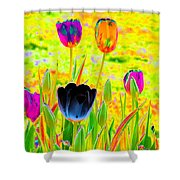 Tulips - Perfect Love - Photopower 2169 Shower Curtain
