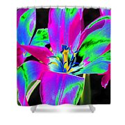 Tulips - Perfect Love - Photopower 2175 Shower Curtain