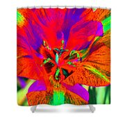Tulips - Perfect Love - Photopower 2179 Shower Curtain