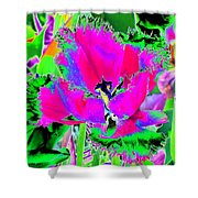 Tulips - Perfect Love - Photopower 2183 Shower Curtain