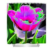 Tulips - Perfect Love - Photopower 2190 Shower Curtain