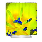 Tulips - Perfect Love - Photopower 2191 Shower Curtain