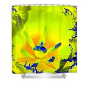 Tulips - Perfect Love - Photopower 2192 Shower Curtain