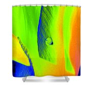 Tulips - Perfect Love - Photopower 2193 Shower Curtain