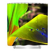 Tulips - Perfect Love - Photopower 2196 Shower Curtain
