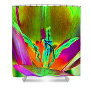 Tulips - Perfect Love - Photopower 2201 Shower Curtain