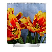 Tulips Radiance Shower Curtain