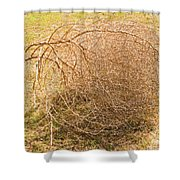Tumbleweed Shower Curtain