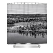 Tundra Pond Reflections Shower Curtain