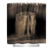 Architects Of Willowdell Shower Curtain