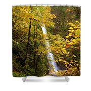 Tunnel Falls  Shower Curtain