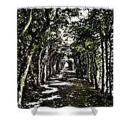 Tunnel Of Trees ... Shower Curtain