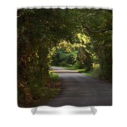 Tunnel Of Trees And Light Shower Curtain