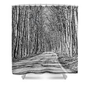 Tunnel Of Trees Black And White Shower Curtain