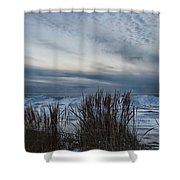 Tunnel Park Through The Grass Holland Michigan Shower Curtain