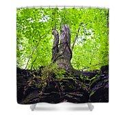 Tunnel Tree Shower Curtain