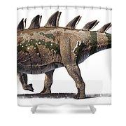 Tuojiangosaurus Multispinus Dinosaur Shower Curtain