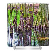 Tupelo/cypress Swamp Reflection At Mile 122 Of Natchez Trace Parkway-mississippi Shower Curtain