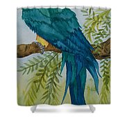 Turk Macaw Shower Curtain