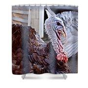 Turkey 2 Shower Curtain