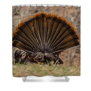 Turkey Tail Shower Curtain