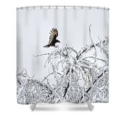 Turkey Vulture In The Snow Shower Curtain