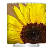 Turmeric Aster Shower Curtain
