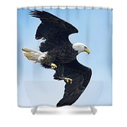 Turnabout Shower Curtain