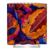 Turning Leaves 5 Shower Curtain by Stephen Anderson