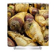 Turnip On Display At Farmers Market Shower Curtain
