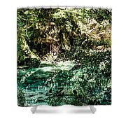 Turquoise Forest Pond On A Summer Day No1 Shower Curtain