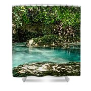 Turquoise Forest Pond On A Summer Day No3 Shower Curtain