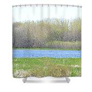 Turquoise Marsh Shower Curtain