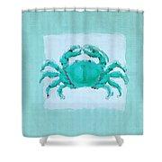 Turquoise Seashells I Shower Curtain