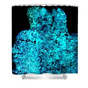 Turquoise Stone Photo Shower Curtain