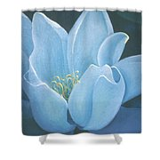 Turquoise Waterlily Shower Curtain