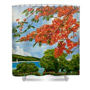 Turtle Bay Virgen Islands Shower Curtain