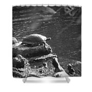 Turtle Bw Shower Curtain by Nelson Watkins