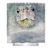 Turtle Face Shower Curtain
