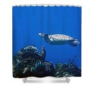 Turtle Flying Underwater Shower Curtain