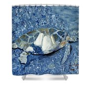 Turtle On Black Sand Beach Shower Curtain
