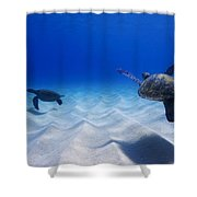 Turtle Pair Shower Curtain
