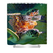 Turtle Reflection Shower Curtain
