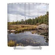 Turtle Rock Cloudy Day Shower Curtain