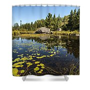 Turtle Rock Sunny Day Shower Curtain