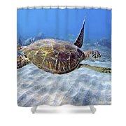 Turtle Underwater 3 Shower Curtain