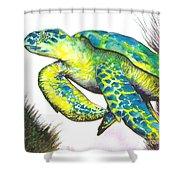 Turtle Wonder Shower Curtain
