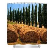 Tuscan Hay Shower Curtain