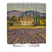 Tuscan Lavender Shower Curtain